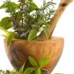 Aromatherapie Basilikum