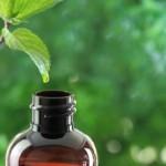 Ätherisches Öl Rosenholz