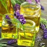 Lavendel Wirkung Heilpflanze