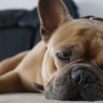 Tipps schlafen bei Hitze